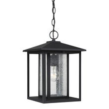 Generation Lighting - Seagull 62027-12 - One Light Outdoor Pendant
