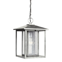Generation Lighting - Seagull 62027-57 - One Light Outdoor Pendant