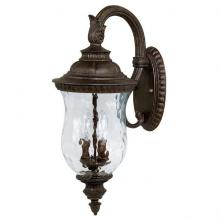 Capital 9782TS - Two Light Tortoise Wall Lantern